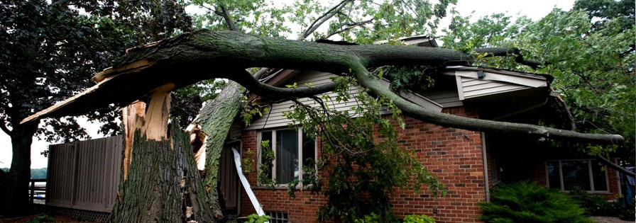 Houston storm damage repair